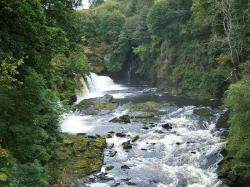 The Falls of Clyde